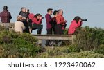 whale watchers looking at... | Shutterstock . vector #1223420062