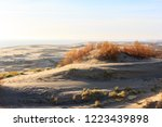 views of the sand dunes with a... | Shutterstock . vector #1223439898