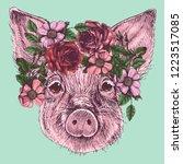 the portrait of a little pig... | Shutterstock .eps vector #1223517085