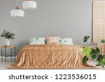 peach colored duvet and pillow... | Shutterstock . vector #1223536015