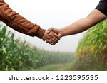 two man shaking hands in the... | Shutterstock . vector #1223595535