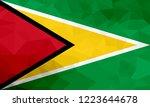 guyana polygonal flag. mosaic... | Shutterstock . vector #1223644678