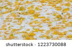 the first snow  late autumn ... | Shutterstock . vector #1223730088