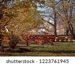 liverpool  new york  usa.... | Shutterstock . vector #1223761945