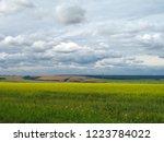 horizon. sunny summer day....   Shutterstock . vector #1223784022