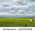 horizon. sunny summer day....   Shutterstock . vector #1223784028