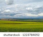 horizon. sunny summer day....   Shutterstock . vector #1223784052