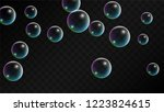 foam bubbles with rainbow... | Shutterstock .eps vector #1223824615