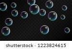 foam bubbles with rainbow... | Shutterstock .eps vector #1223824615