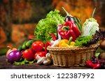 vegetable | Shutterstock . vector #122387992