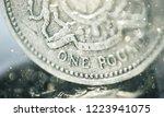 pound symbol  one pound coin ... | Shutterstock . vector #1223941075