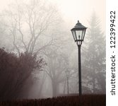 Street Lamp And Forest Park In...