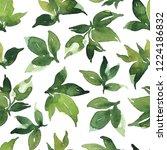 watercolor seamless pattern... | Shutterstock . vector #1224186832