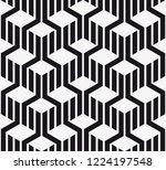 vector seamless pattern.... | Shutterstock .eps vector #1224197548