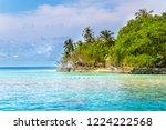 tropical sandy beach | Shutterstock . vector #1224222568