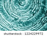part of old ceramic plate close ... | Shutterstock . vector #1224229972