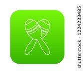 mexican maracas icon green... | Shutterstock .eps vector #1224233485