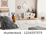 small flat interior with bed ... | Shutterstock . vector #1224257575