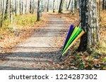 colorful umbrella in autumn... | Shutterstock . vector #1224287302