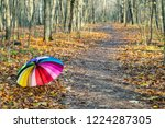 multicolored umbrella lies on... | Shutterstock . vector #1224287305