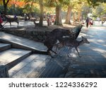 Small photo of Nara / Japan - November 12, 2016 : Deer are in heat, ingraft and hybridize in the park in front of temple in autumn.