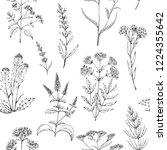 seamless vector pattern of... | Shutterstock .eps vector #1224355642