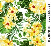 tropical summer pattern vector... | Shutterstock .eps vector #1224537715