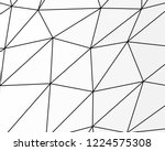 asymmetrical texture with... | Shutterstock .eps vector #1224575308