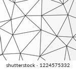 asymmetrical texture with... | Shutterstock .eps vector #1224575332