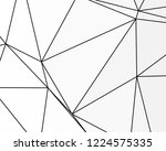 asymmetrical texture with... | Shutterstock .eps vector #1224575335