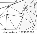asymmetrical texture with... | Shutterstock .eps vector #1224575338