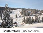 winter in schwarzwald....   Shutterstock . vector #1224643048