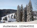 winter in schwarzwald. high...   Shutterstock . vector #1224645532