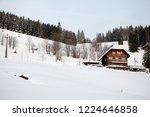 winter in schwarzwald. mountain ...   Shutterstock . vector #1224646858