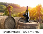 red wine with barrel on... | Shutterstock . vector #1224743782