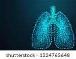 abstract image of a human lungs ... | Shutterstock .eps vector #1224763648