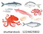 Stock vector vector set of seafood in flat style isolated on white simple icons of squid octopus dorado 1224825802