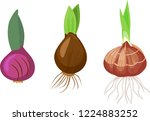 set of bulbs of different... | Shutterstock .eps vector #1224883252
