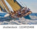 sailing yacht race. yachting | Shutterstock . vector #1224925408