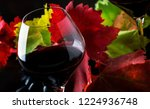 dry red wine from pinot noir... | Shutterstock . vector #1224936748