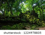 the hidden beauty of ancient... | Shutterstock . vector #1224978835