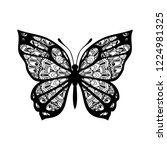 butterfly with patterned wings. ... | Shutterstock .eps vector #1224981325