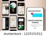 editable instagram stories... | Shutterstock .eps vector #1225151512