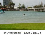 landscape of perth surroundings | Shutterstock . vector #1225218175