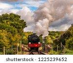 Beautiful Steam Train