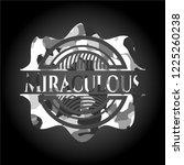 miraculous grey camo emblem   Shutterstock .eps vector #1225260238