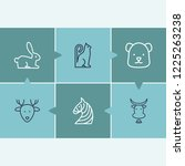 zoo icon set and rabbit with...