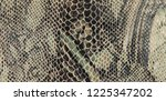snake scales embossed patent...   Shutterstock . vector #1225347202