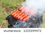 fried sausages on the brazier | Shutterstock . vector #1225359472