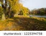 weeping willow tree over the...   Shutterstock . vector #1225394758